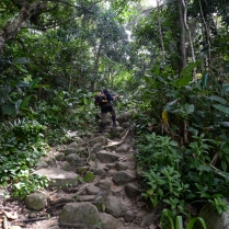 Typical Part of the Trail