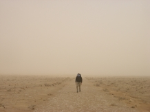Man in the sandstorm
