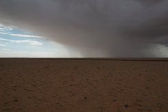 Rain in the desert