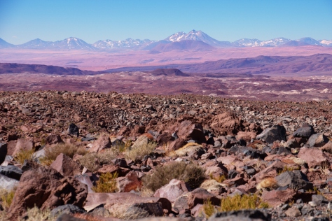 In the outskirts of the Atacama Desert