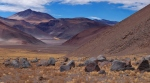Finally Argentina - still in the Puna de Atacama
