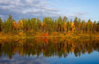 Fall in Northern Finland