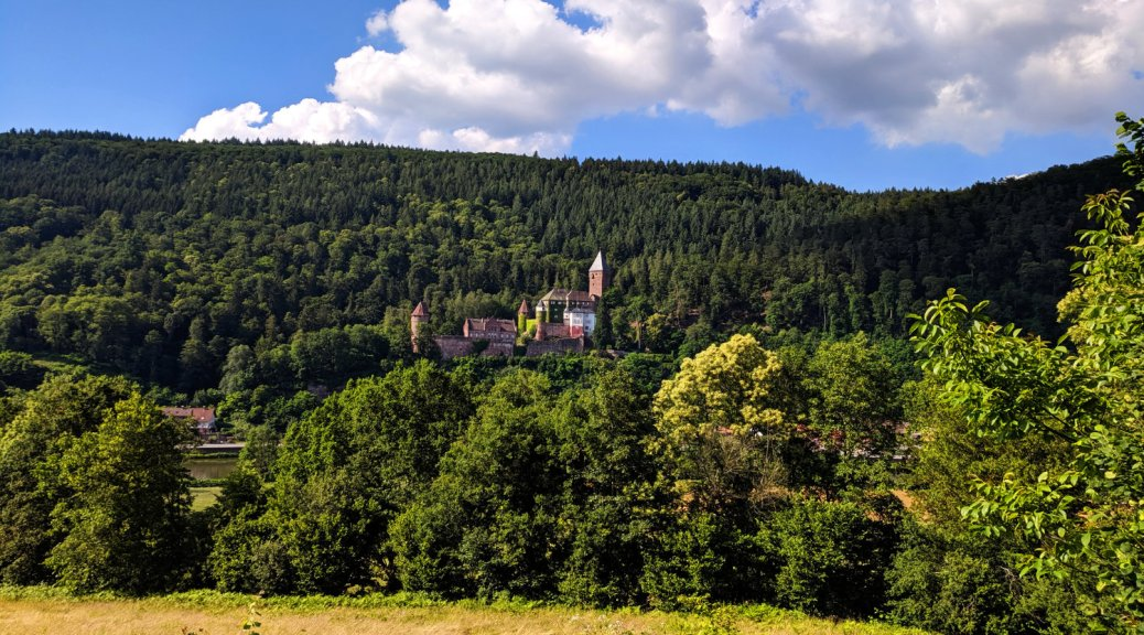 View on the Castle Zwingenberg