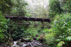 On the Trail in La Reunion