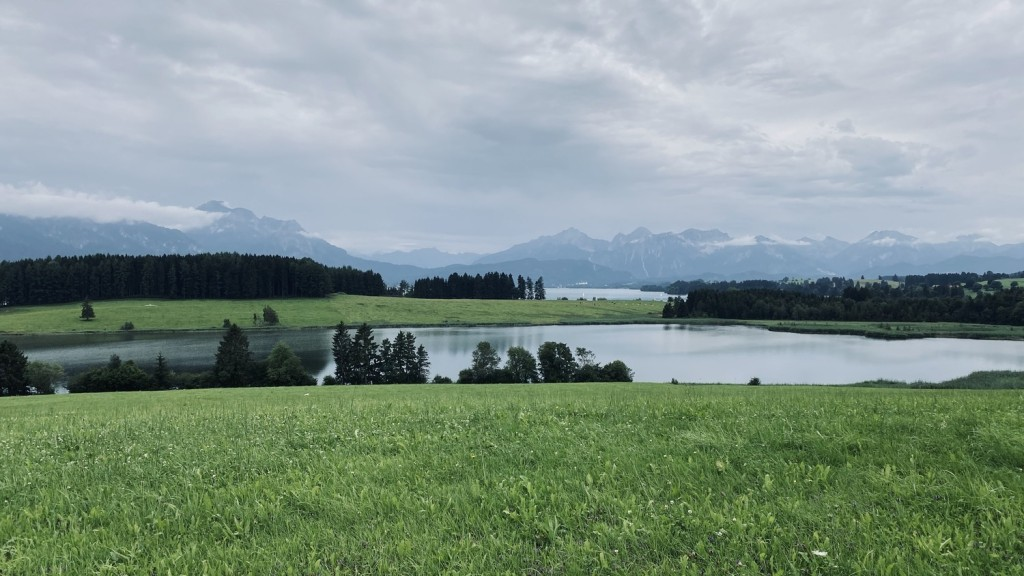 View on the Forggensee